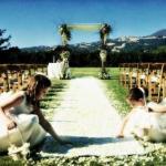 Финишная прямая подготовки к свадьбе.
