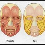 Как похудеть в лице?